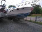 Bateau Bayliner Conquest 31 1983, 32 pieds